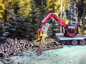 Holzbringung mit Seilbahn